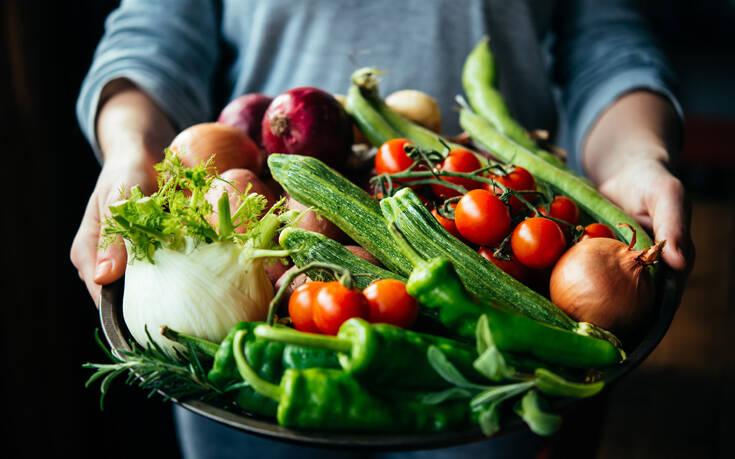 Πώς να διατηρείτε φρέσκα τα τρόφιμά σας – Newsbeast
